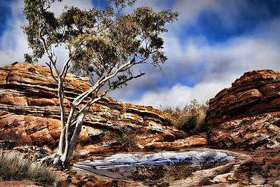 Australia Landscape 5 Art Print by Wendy White