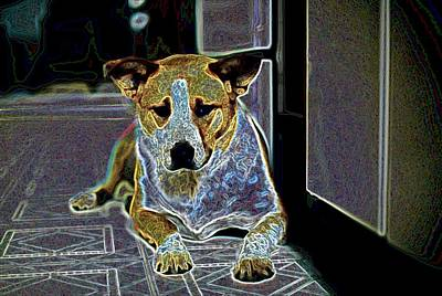 Australian Cattle Dog Boxer Mix Art Print by One Rude Dawg Orcutt