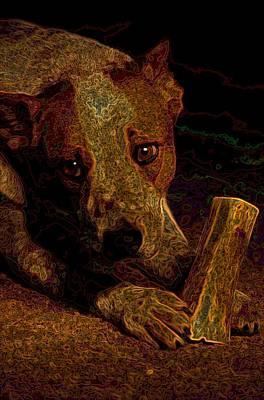 Australian Cattle Dog Art Print by One Rude Dawg Orcutt