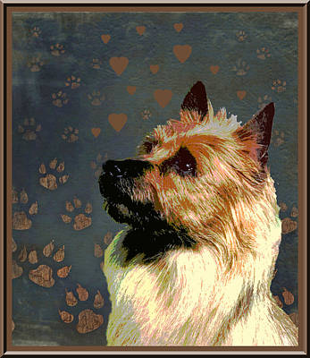 Caravaggio - Australian Terrier by One Rude Dawg Orcutt