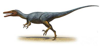Dromaeosaurid Digital Art - Austroraptor Cabazai, A Prehistoric Era by Sergey Krasovskiy
