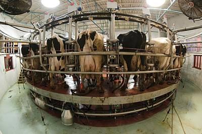 Automatic Milking Machine Art Print by Photostock-israel