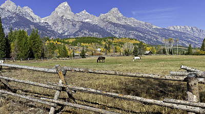 Autum In The Tetons Original by David Jefferis