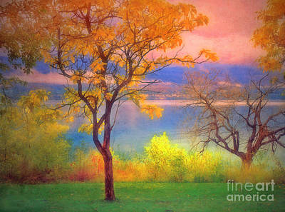 Okanagan Lake Photograph - Autum Morning by Tara Turner