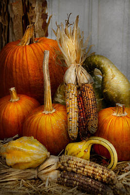 Photograph - Autumn - Gourd - Pumpkins And Maize  by Mike Savad
