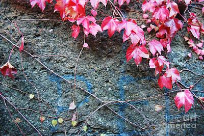 Autumn 14 Art Print by Elena Mussi