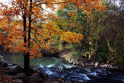 Photograph - Autumn 2 by Dragan Kudjerski