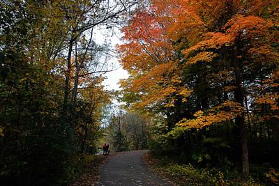 Photograph - Autumn 3 by Dragan Kudjerski
