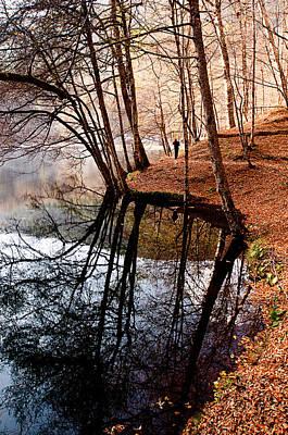 Photograph - Autumn - 4 by Okan YILMAZ