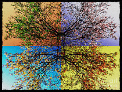 Photograph - Autumn Abstract by Jeff Breiman