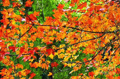 Photograph - Autumn Abstract Painterly by Andee Design