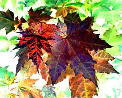 Maple Leaf Art Digital Art - Autumn Ambiance by Will Borden
