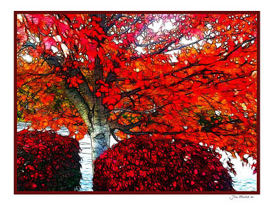 Photograph - Autumn And The Red Tree by Joan  Minchak