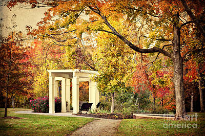 Photograph - Autumn Arbor by Cheryl Davis