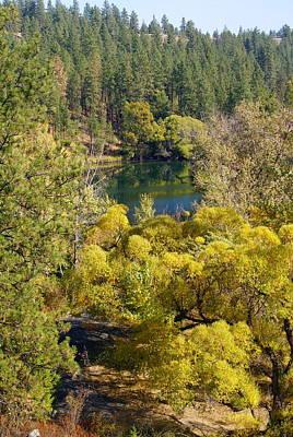 Photograph - Autumn Art In Nature Near Spokane by Ben Upham III