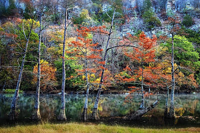 Autumn At Beaver's Bend Art Print by Tamyra Ayles