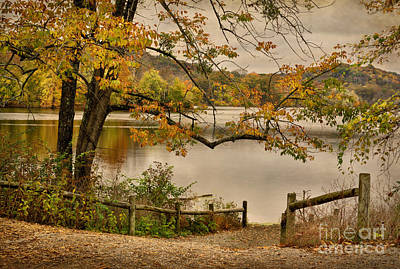 Photograph - Autumn At Radnor Lake by Cheryl Davis