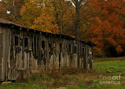Photograph - Autumn At The Barn Smoky Mountains National Park by Nature Scapes Fine Art