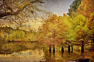 Autumn At The Creek Art Print