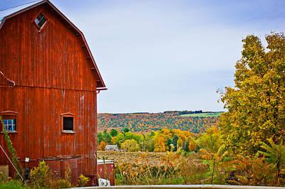 Photograph - Autumn At The Farm by Sara Frank