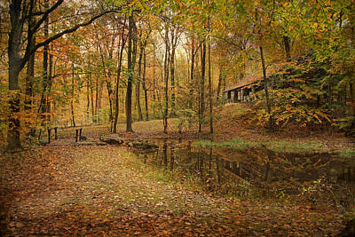 Autumn At Voorhees Art Print