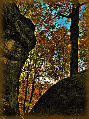 Photograph - Autumn At Whipps Ledges Trail by Joan  Minchak