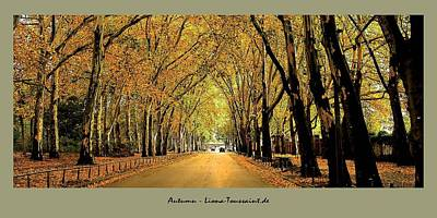 Autumn Avenue Art Print by Liona Toussaint