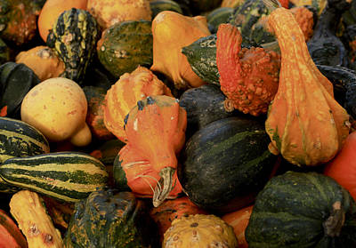 Art Print featuring the photograph Autumn Bounty by Patrice Zinck