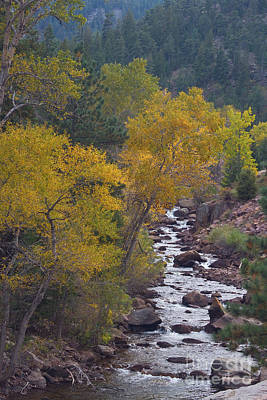 Stream Lanscape Photograph - Autumn Canyon Colorado Scenic View by James BO  Insogna