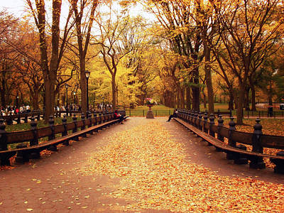 Fall Foliage New York Wall Art - Photograph - Autumn - Central Park - New York City by Vivienne Gucwa