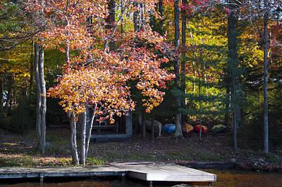 Photograph - Autumn Color 16 by David Patterson