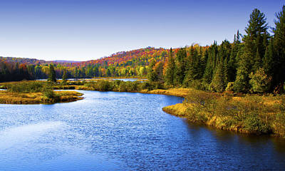 The Moose River In Thendara Art Print by David Patterson