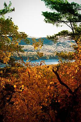 Photograph - Bald Mountain View by David Patterson