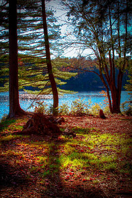 Photograph - Cary Lake In The Fall by David Patterson