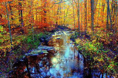 Autumn Colors 10 Art Print