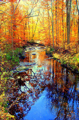 Autumn Colors 11 Art Print