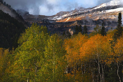 Photograph - Autumn Colors In The Wasatch Mountains by Douglas Pulsipher