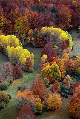 Scenic View In France Photograph - Autumn Colors by Martial Colomb