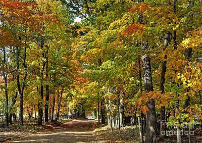 Metamora Photograph - Autumn Colors by Rodney Campbell