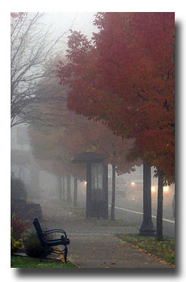 Photograph - Autumn Commute by Chris Anderson
