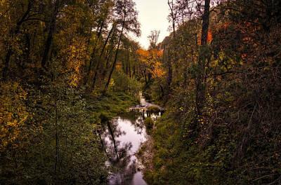 Autumn Creek  Art Print by Saija  Lehtonen