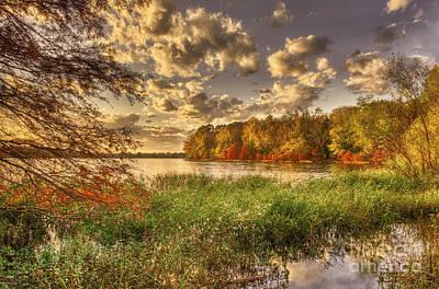 Photograph - Autumn Creek Sunlight by Cheryl Davis