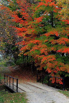 Photograph - Autumn Crossing by Scott Hovind
