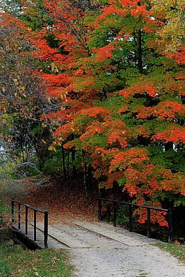 Autumn Crossing Art Print by Scott Hovind