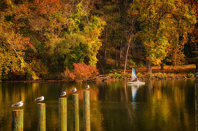 Autumn Day Art Print by Boyd Alexander