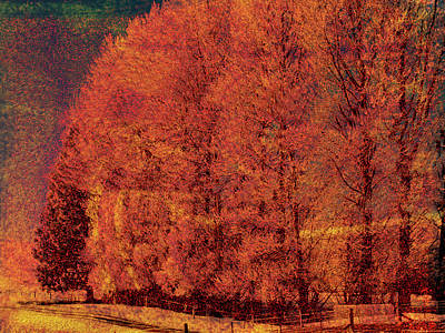 Autumn Days Art Print