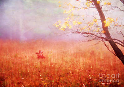 Autumn Dreams Art Print by Darren Fisher