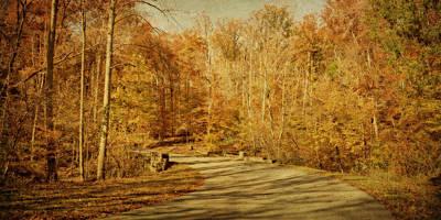 Photograph - Autumn Drive by Sandy Keeton