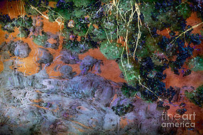 Cherry Tree Photograph - Autumn Fantasy by Susan Isakson