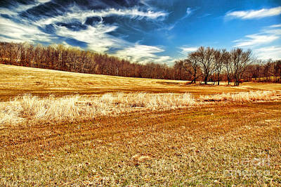 Southwick Photograph - Autumn Field by HD Connelly